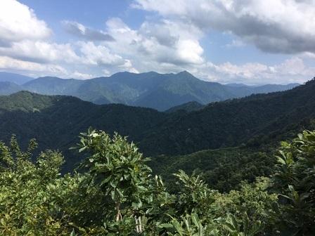 登山道から