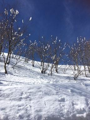雪景色2月2