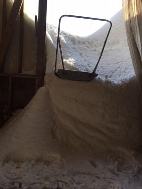 居間から雪