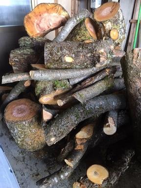 車庫の原木