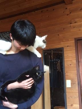 息子と猫猫