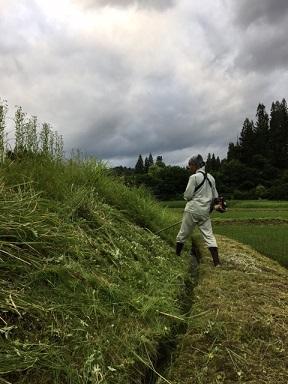 草刈り2021