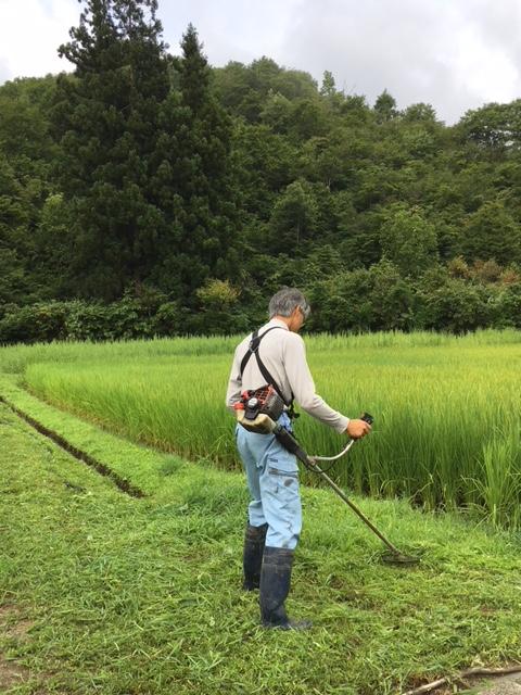 2018草刈り