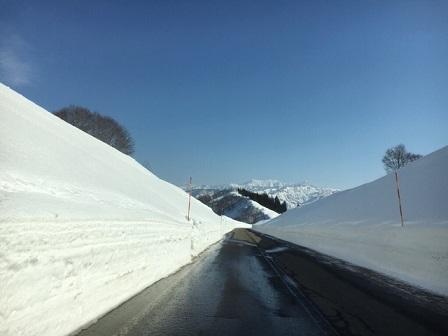2月雪景色