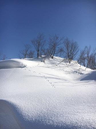 2月雪景色2