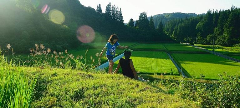 魚沼コシヒカリ(うおぬまコシヒカリ)は、新潟県魚沼地域(5市2町)で収穫される、コシヒカリBL(9割以上)およびコシヒカリ(1割以下)の米の産地ブランド。魚沼産コシヒカリ(うおぬまさんコシヒカリ)として販売しているケースもある。テロワール(環境条件)がコシヒカリBLおよびコシヒカリの最適生育条件に近く、また、生産農家の栽培技術向上により、日本穀物検定協会の米食味ランキングでは1989年(平成元年)より、2004年(平成16年)までコシヒカリで、2005年(平成17年)以降はコシヒカリIL(コシヒカリBLの4品種混合栽培)で25年連続「特A」認定と国内最高評価を受けている[1]。1993年(平成5年)に発生した平成の米騒動でも、「特A」認定を受けた国内唯一の産地でもある。